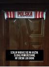 SZALIK SAMOCHODOWY NA SZYBĘ Z PRZYSSAWKAMI - POLSKA